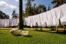 Laundry on the Line Thumbnail